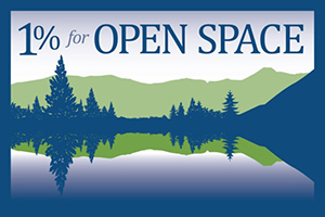1Open Space